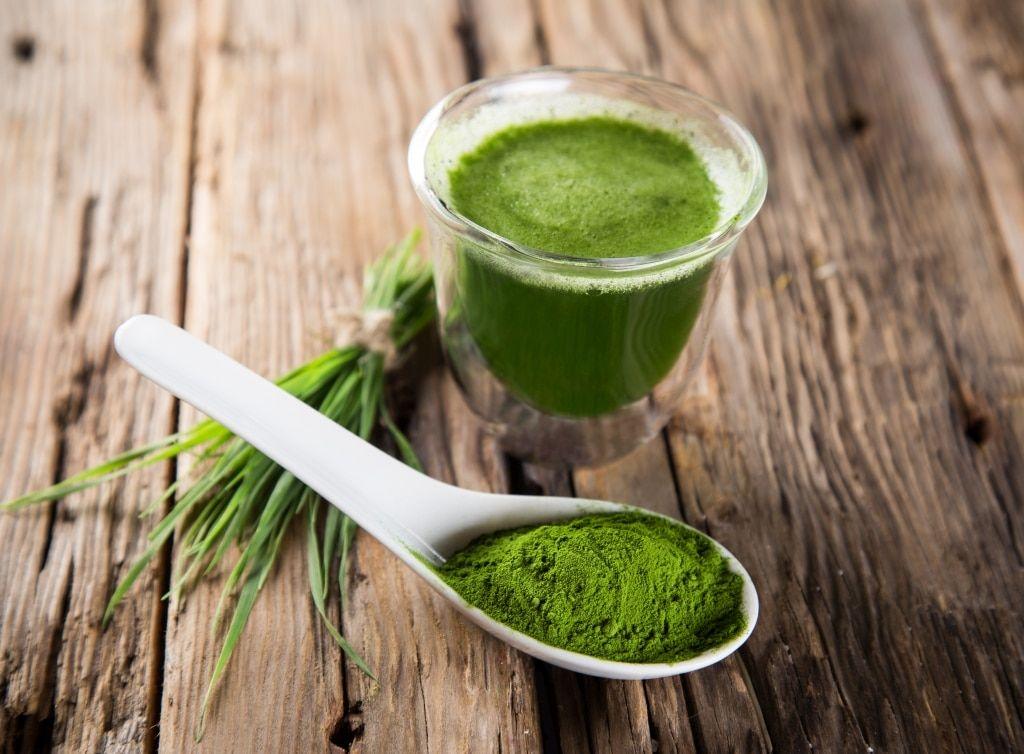 prozdrowotna alga